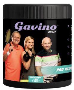 GAVINO AKTIV PRO KLOUBY 700 G