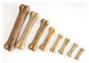 Přírodní kost 20cm