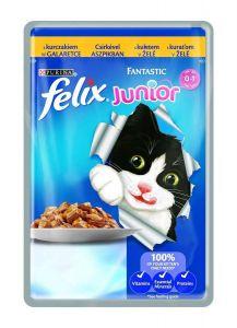 Felix Fantastic Junior kapsička s kuřetem v želé 100g